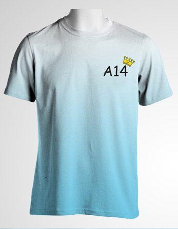 Mẫu áo thun ombre từ trắng sang xanh dương của lớp 12a14 trường THPT Mạc Đĩnh Chi.