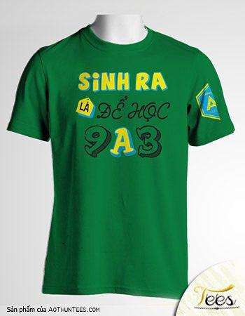 Mẫu áo thun của các bạn lớp 9A3 trường THCS Lương Thế Vinh